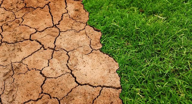 přechod trávy a vyprahlé země