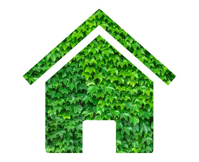 zelený dům